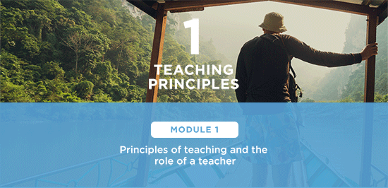 how to become a tesol teacher